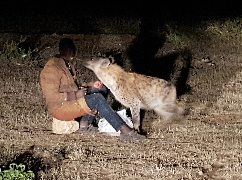 Harar, más allá de Burton y el Hombre de las Hienas