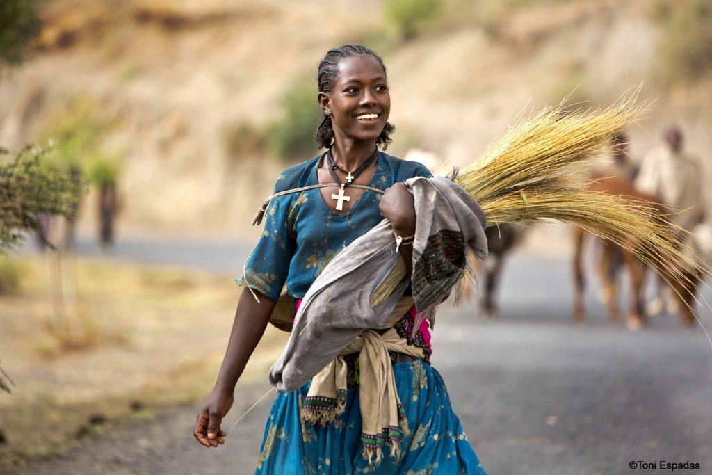 El teff, el cereal de Etiopía que viaja a Europa